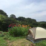 庭でキャンプ