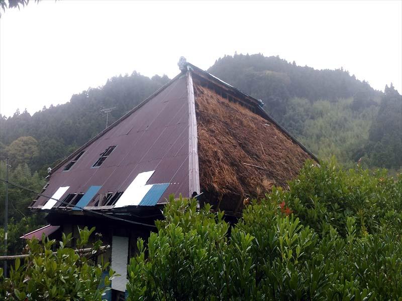 トタン屋根が飛んで、茅葺が丸見え