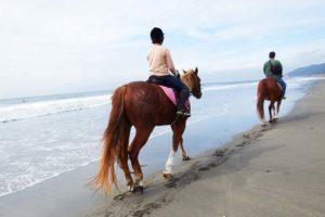 乗馬で海辺を散歩中