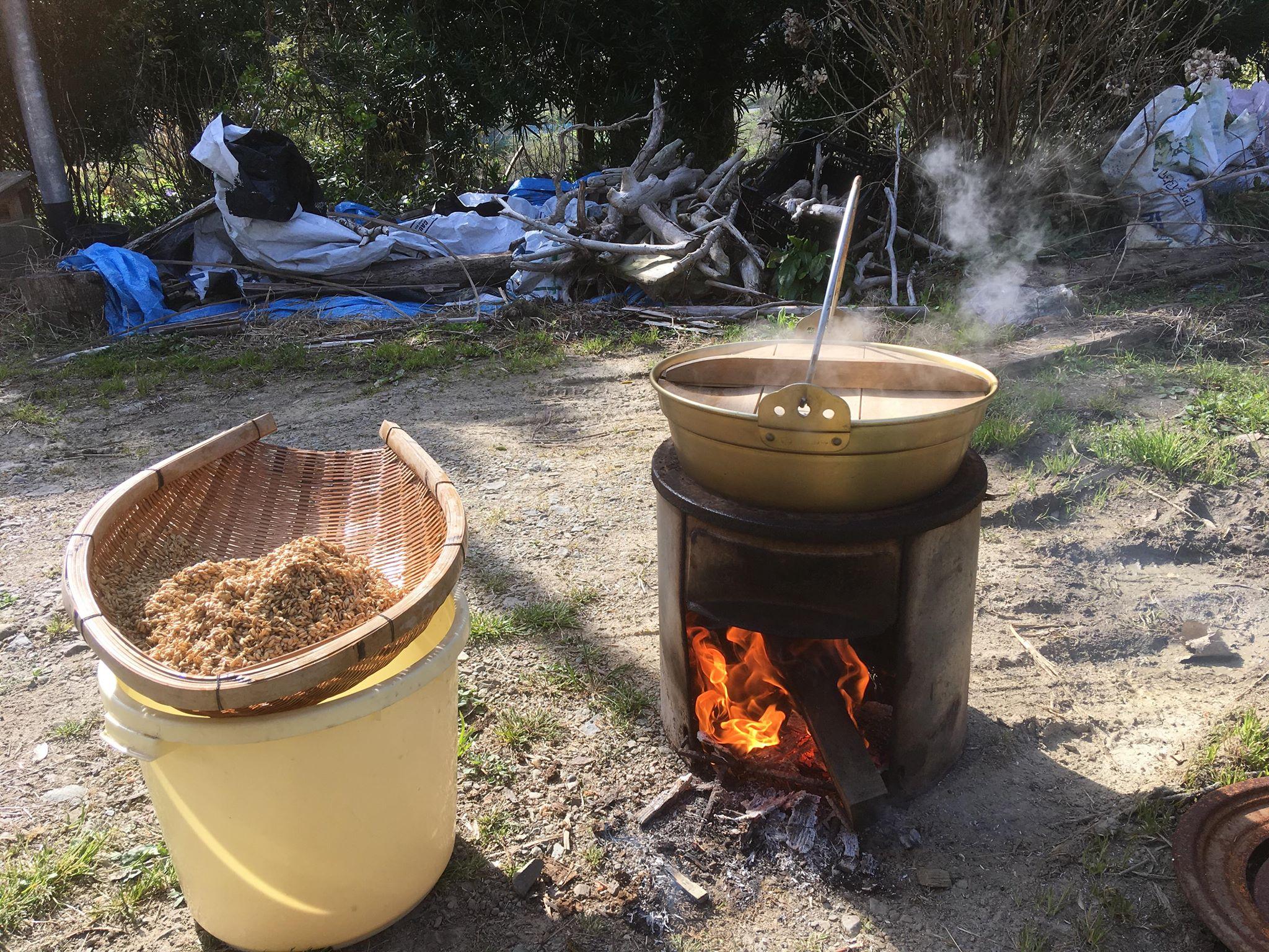 苗づくり60度温熱消毒