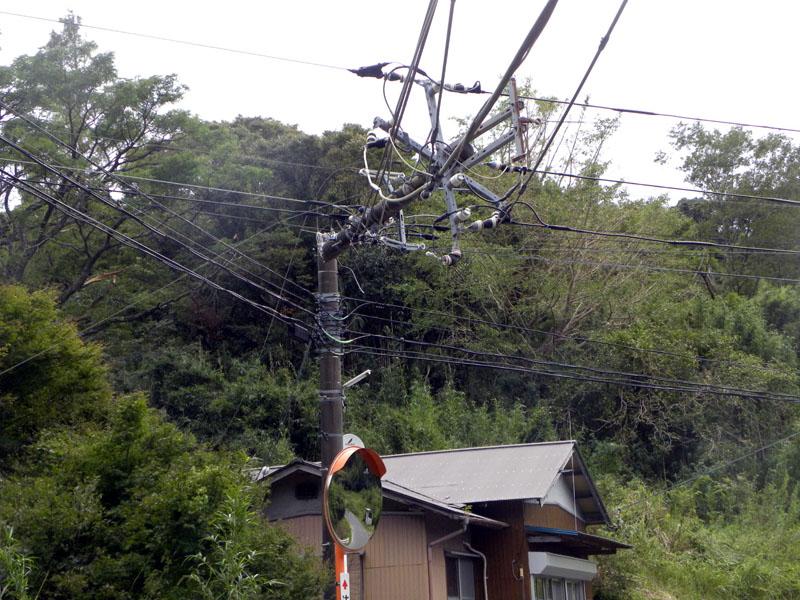 台風15号で折れた電信柱