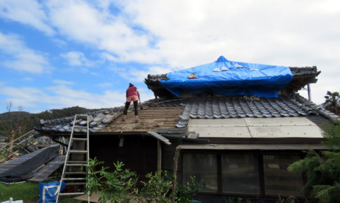 屋根上の掃除をする女性
